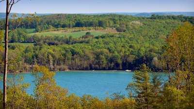 Residential Lots & Land For Sale: Unit 9 Vistas Of Walloon #9