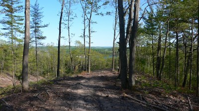 Residential Lots & Land For Sale: Unit 6 Vistas Of Walloon #6