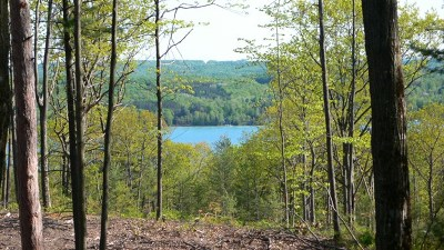 Residential Lots & Land For Sale: Unit 10 Vistas Of Walloon #10