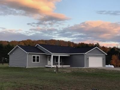 Alanson Single Family Home For Sale: 8177 Bluebird Lane #16