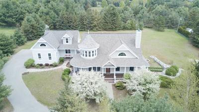 Harbor Springs Single Family Home For Sale: 7233 Hughston