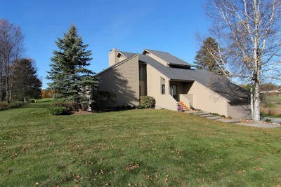 Harbor Springs Single Family Home For Sale: 2893 Greenbriar