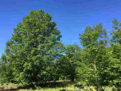 Residential Lots & Land For Sale: 4348 Mountainview Trail