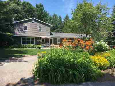 Harbor Springs Single Family Home For Sale: 540 W Summit