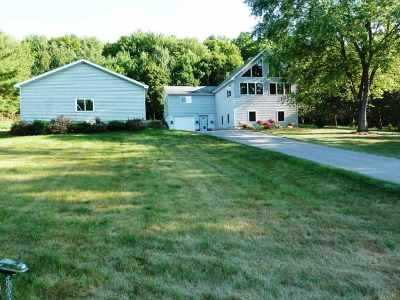 Boyne City Single Family Home For Sale: 350 Warner Creek