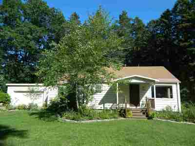 Harbor Springs Single Family Home For Sale: 818 Arbor Street