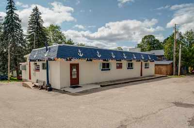 Charlevoix County Commercial For Sale: 04472 N M-75