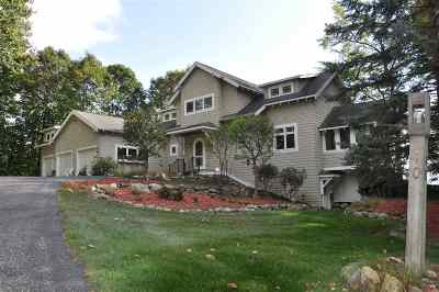 Harbor Springs Single Family Home For Sale: 140 Birchwood Dr