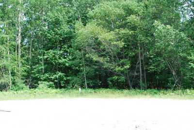 Petoskey MI Residential Lots & Land For Sale: $275,000