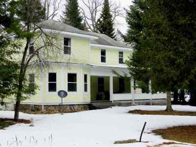Alanson Single Family Home For Sale: 7831 Lake Street
