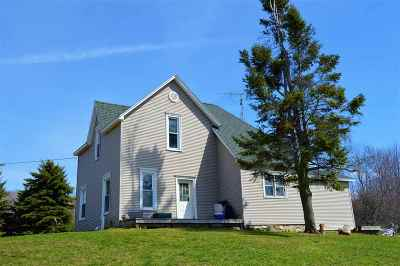Charlevoix Single Family Home New: 17342 Ferry Road