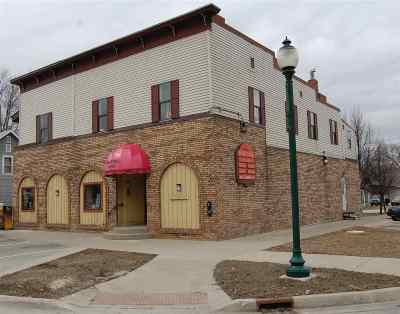 Charlevoix County Commercial For Sale: 123 N Park Street