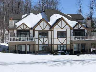 Harbor Springs Single Family Home For Sale: 1113 North Peak Pass Room 743 #- Unit 4