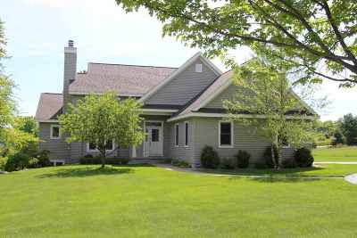 Harbor Springs Single Family Home For Sale: 6807 Hillside