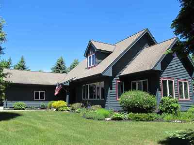 Harbor Springs Single Family Home For Sale: 5010 Mountain Watch Drive