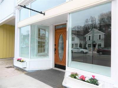 Harbor Springs Commercial For Sale: 236 E Main