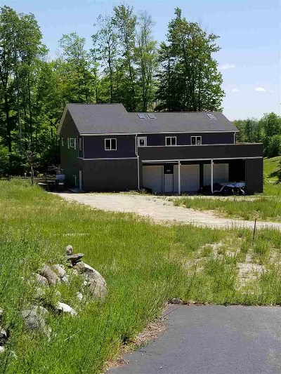 Alanson Single Family Home For Sale: 5408 Burt Lake View Drive
