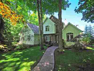 Charlevoix Single Family Home New: 13157 Robin's Ridge Road