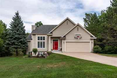Harbor Springs Single Family Home For Sale: 140 Meadow Wood Drive