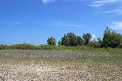 Charlevoix County Commercial For Sale: 06889 S Us 31