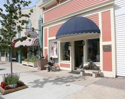 Harbor Springs Commercial For Sale: 175 E Main Street