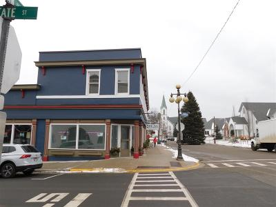 Harbor Springs Commercial Lease For Lease: 101 W Main St