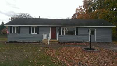 Alanson Single Family Home For Sale: 9290 Banwell Road