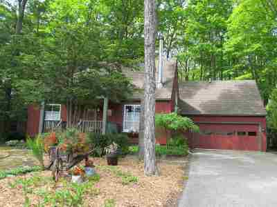Harbor Springs Single Family Home For Sale: 599 Sargent St.
