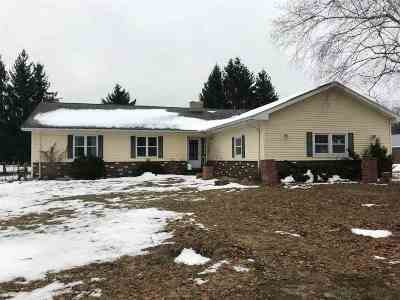 Alanson Single Family Home For Sale: 8232 M68