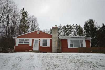 Boyne City Single Family Home For Sale: 1141 Pleasant Avenue