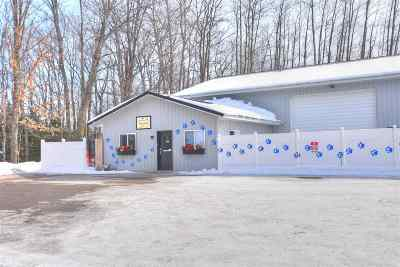 Charlevoix County Commercial For Sale: 1441 Lexamar Drive