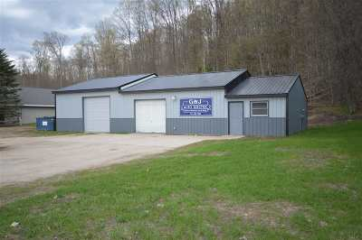 Charlevoix County Commercial For Sale: 1280 S M-75