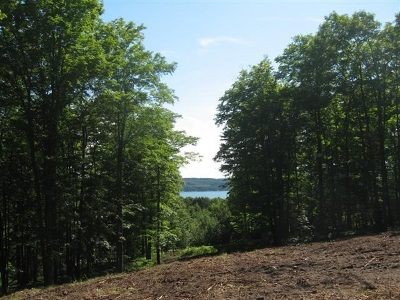 Residential Lots & Land For Sale: 01700 Boyne Cove Drive #6