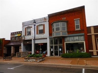 Charlevoix County Commercial For Sale: 207 Main Street