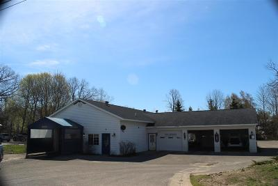 Charlevoix County Commercial For Sale: 850 Petoskey Avenue