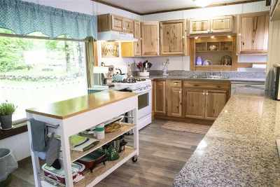 Harbor Springs Single Family Home For Sale: 830 S State Road