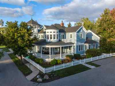 Harbor Springs Single Family Home For Sale: 8675 Ramona Park Drive