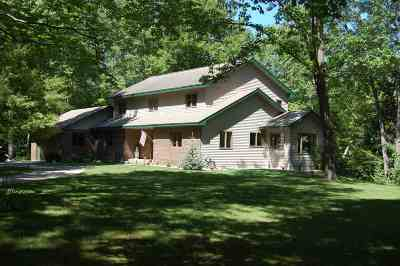Boyne City Single Family Home For Sale: 00843 N Advance Road