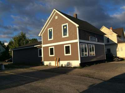 Petoskey Commercial For Sale: 311 W Mitchell Street