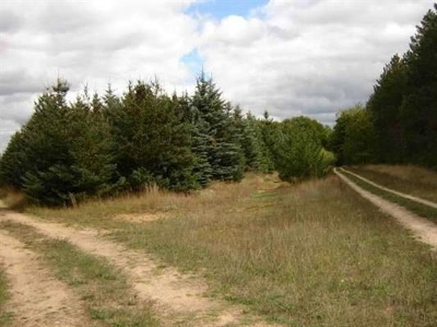 Residential Lots & Land Sold: Deer Track Trail