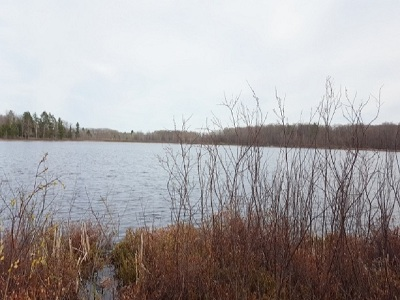 Residential Lots & Land For Sale: 10850 N Mackinaw Hwy