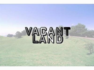 Huron Twp Residential Lots & Land For Sale: 21455 Otter Road