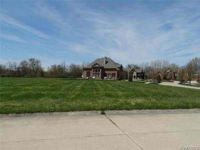 Grosse Ile, Gross Ile, Grosse Ile Twp Residential Lots & Land For Sale: Vacant Calm Meadow Court
