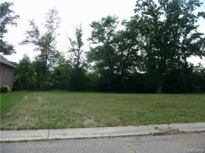 Residential Lots & Land For Sale: 4596 Dolores