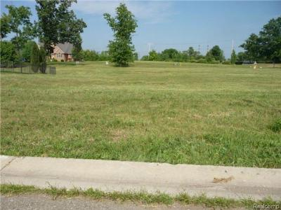 Residential Lots & Land For Sale: 4599 Dolores
