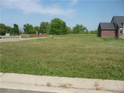 Trenton Residential Lots & Land For Sale: 4583 Dolores