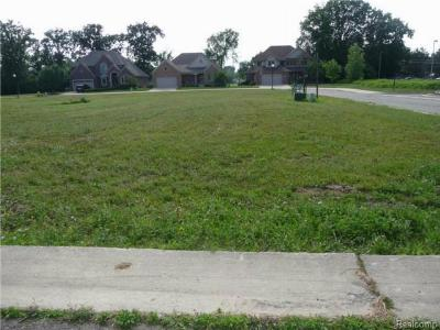 Trenton Residential Lots & Land For Sale: 4582 Orville