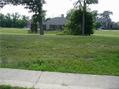 Residential Lots & Land For Sale: 4594 Orville