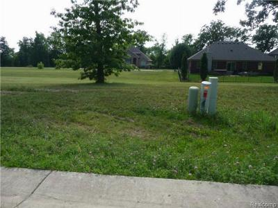 Trenton Residential Lots & Land For Sale: 4598 Orville