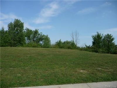 Trenton Residential Lots & Land For Sale: 4585 Orville